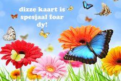 Postkaarten Friese teksten - Vak 129