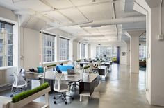 now-what-new-york-office-design-4