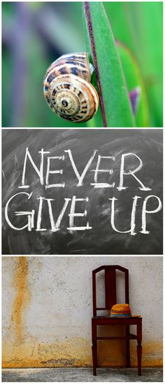 Motivation Mondays: