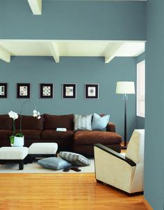 Dunn-Edwards Paints paint colors: Wall: Silver Skate DE5801; Trim/Ceiling: Bone White DEC741 | Click for a free color sample #DunnEdwards