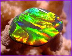 //Black opal; red is the rarest colour, blue the commonest.