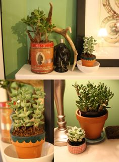 green makes it feel like home...made it. using an old candle tin as a planter pot.