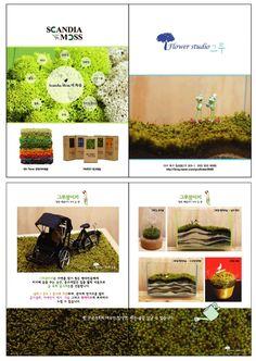 2017.06.01 ~ 06.04 DAEGU FLOWER expo - Flower Studio GRU(No.D140) (대구꽃박람회 - 플라워스튜디오 그루) 》SCANDIA MOSS     - interior design    - Frame 》그루잠(Dance plants) blog.naver.com/grufloer9595