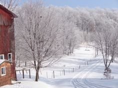 Beautiful winter scene at a farm in Porter Township. Photo submitted by Jayne McCauley.