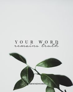 #herwindwords #scripture #truth #freedom
