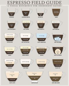 Everything You Need To Know About Coffee In One Image Espresso Drinks, Espresso Coffee, Coffee Drinks, Coffee Cups, Coffee Coffee, Coffee Beans, Morning Coffee, Coffee List, Coffee Names