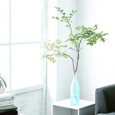 misaeさんの、リビング,観葉植物,IKEA,カラーボックス,シンプル,枝物,植物のある暮らし,塩系インテリア,のお部屋写真