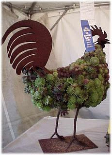 hehe - a hen & chicks covered rooster  love it! Gotta do it! It will blow my chickens minds.