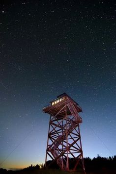 Off-Grid Lookout Tower Cabin in Tiller 0027
