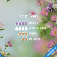 Inner Peace — Essential Oil Diffuser Blend