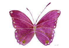 Art Archival Print Deep Purple Butterfly Watercolor illustration Wall Decor Art Home Decor Housewares