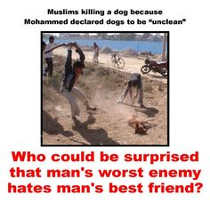 """Muslims have declared a fatwa on dogs in Europe. PROTECT YOUR DOGS. Muslims killing a dog because Mohammed declared dogs to be """"unclean"""". Who could be surprised that man's worst enemy hates man's best friend? All i feel is sorrow. Mans Best Friend, Best Friends, Loyal Friends, Dog Friends, Muslim Brotherhood, Sharia Law, Hate Men, Islam Muslim, Speak The Truth"""