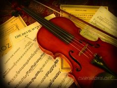 GOAL - to learn to play the violin...I have the violin already, but no lessons on the horizon just yet...oh well, you gotta save something for retirement, right?