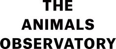The Animals Observatory is the result of a love at first sight scenario between two people, Laia Aguilar and Jan Andreu.