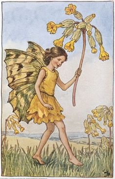 llustration for the Cowslip Fairy from Flower Fairies of the Spring. A girl fairy runs from left to right, holding a cowslip in her left hand.    Author / Illustrator  Cicely Mary Barker
