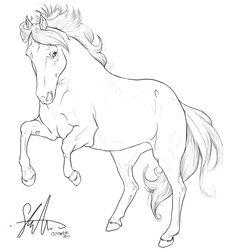 Horse Lineart by Syra-Syra.deviantart.com on @DeviantArt