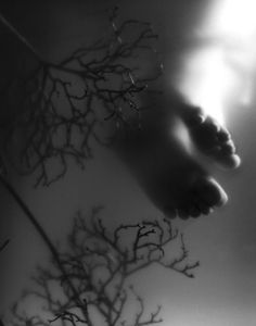 Surfacing - Kalliope Amorphous