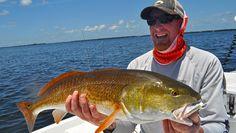 Bradenton Fishing Charters - Capt. Jason Dozier Flat Fish, Bradenton Beach, Holmes Beach, Fishing Charters, Manatee, Spanish, Flats, Loafers & Slip Ons, Manatees