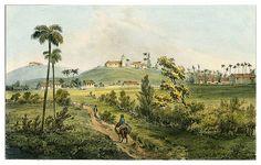 Vintage Cuba, University Of Miami, Havana Cuba, Cuban, Painting, Ephemera, Cuban Cigars, Havana, 19th Century