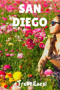 20 ways to be a local traveler in San Diego, California