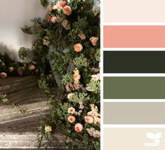 Design Seeds celebrate colors found in nature and the aesthetic of purposeful living. Colour Pallette, Color Palate, Colour Schemes, Color Combos, Color Patterns, Color Concept, Color Harmony, Design Seeds, World Of Color