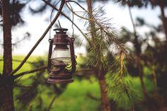 5472x3648 Wallpaper lantern, lamp, branches