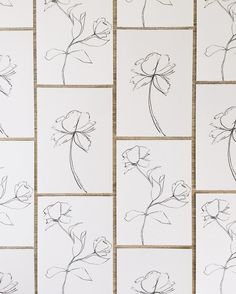 Pin by Софья on Herbarium Simple line drawings Simple lines Drawings
