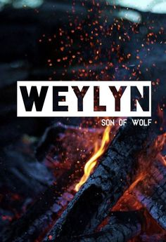 Weylyn, meaning: son of wolf, w baby names, baby boy, baby names, boy names, names that start with W , ttc, middle names, W boy names, male names, unique boy names, unique baby names, strong names, ttc, pregnant