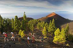 Trail : Transvulcania