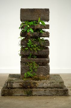 The Path of Least Resistance was a sculptural installation and photographic series created for exhibition at MOP Projects, Sydney in November 2009.