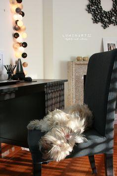 Workpace and our little Helper <3   #Luminart lights at www.luminart.pt