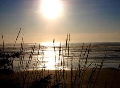 The Oregon Coast... need I say more!