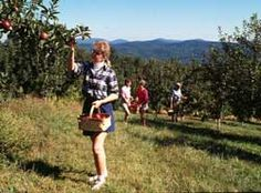 Visitors Information Center | NC Apples | Orchard Tours | Apple Picking | Henderson County | Hendersonville, NC