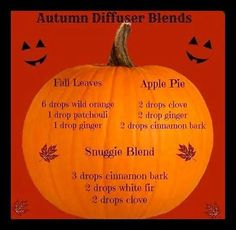 Autumn Diffuser Blend Ideas! www.greenlivingladies.com www.mydoterra.com/303320