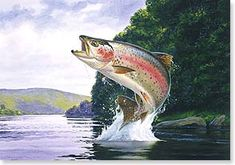 trout jumping out of water - Recherche Google