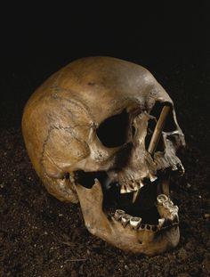 Våben, vold og død i bondestenalderen. Befolkningen voksede, og det skabte konkurrence om plads, magt og lederskab. Bonden kunne markere sin position ved kamp såvel som ved fredelig udveksling af gaver med naboer og venner. Gaver kunne bestå af pragtøkser af flint eller af ravperler.  En del af disse rigdomme blev ofret i søer til de højere magter. I den tidlige bondestenalder skete det dog også, at mennesker blev henrettet og kastet i søer. Bøndernes indbyrdes konflikter kan have udløst…