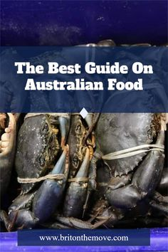 Australian food is often a mystery to most. Instead of listing some of the classic gourmet destinations, we chose to give you insider scoop. We checked out some of the most renowned chefs in the country and have noted what they had to say about 'their' favorite food destinations. #australianfoodtraditional #traditionalaustralianfood #australianfoodtraditions #popularaustralianfood #christmasaustralianfood #australianfoodculture #culturalaustralianfood Visit Australia, Australia Travel, Traditional Australian Food, Travel Around The World, Around The Worlds, Online Travel, Great Barrier Reef, Wanderlust Travel, Vacation Trips