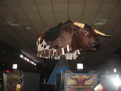 Double Bucks at Little River Casino Resort! Double Jackpots when the Bull is bucking!