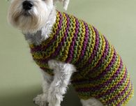 Striped Dog Sweater (Free Knitting Pattern)