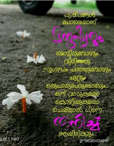 Malayalam Quotes, Joker Quotes, Thoughts And Feelings, True Words, Photo Art, Life Quotes, Poetry, Mindfulness, Inspirational Quotes