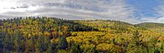 #fall in the black hills Spearfish Canyon #Travel #Vacation