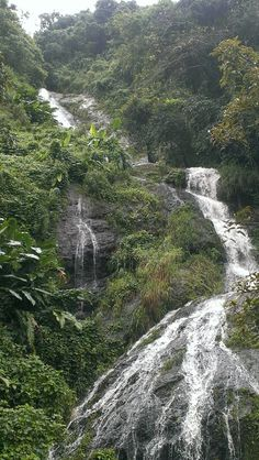 Waterfall in Orocovis. Puerto Rico Usa, Puerto Rico Island, Puerto Rico Trip, Puerto Rico History, Beautiful Islands, Beautiful Beaches, Greater Antilles, Enchanted Island, Little Island
