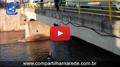 Bons samaritanos salvam cão abandonado debaixo de uma ponte na Sérvia