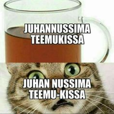 Funny Meems, Finnish Language, Funny Pick, Dark Memes, Sarcastic Humor, Mood Quotes, Puns, Finland, I Laughed