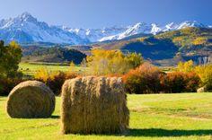 colorado in the fall   Map Guide: Viewing Colorado's Fall Aspens