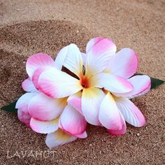 dd3600655 11 Best Flower hair clips images in 2019 | Flower hair clips ...