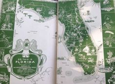 Fresh Slices of Old Florida