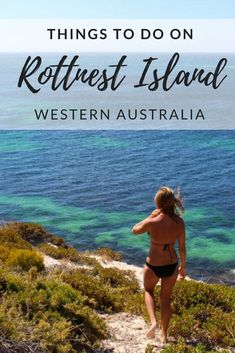 Things to do on Rottnest Island Australia Beach, Visit Australia, Western Australia, Perth, Fun Water Parks, Meanwhile In Australia, Snorkel Set, Australia Travel Guide, Travel Guides