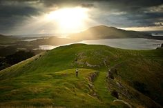 New Zealand sunset over a lush green trail.