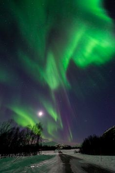 sitoutside:the arctic sky  by  John A.Hemmingsen